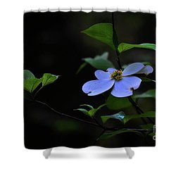 Shower Curtain featuring the photograph Exquisite Light by Skip Willits