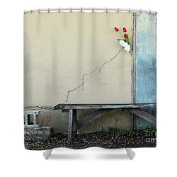 Shower Curtain featuring the photograph Exterior Decorator by Joe Jake Pratt