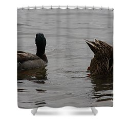 Shower Curtain featuring the photograph Extreme Fishing by Kim Henderson
