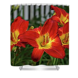 Shower Curtain featuring the photograph Eye Catching by Sandy Keeton