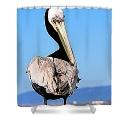 Shower Curtain featuring the photograph Eye Contact by AJ Schibig