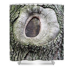 Shower Curtain featuring the photograph Eye  by Lola Connelly
