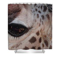 Eye Of A Giraffe Shower Curtain