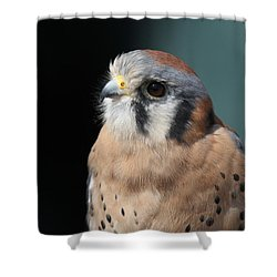 Shower Curtain featuring the photograph Eye Of Focus by Laddie Halupa