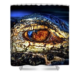 Eye Of The Apex Shower Curtain