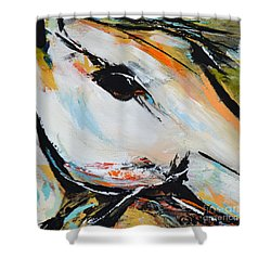 Shower Curtain featuring the painting Eye Of The Beholder by Cher Devereaux