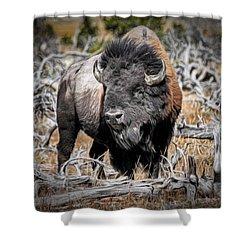 Eye Of The Buffalo Shower Curtain