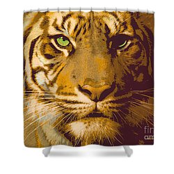 Eye Of The Tiger Animal Portrait  Shower Curtain