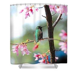 Eye On Spring Shower Curtain by Lynn Bauer