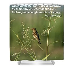 Eye On The Sparrow Shower Curtain by Robert Frederick