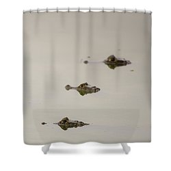 Shower Curtain featuring the photograph Eye Spy by Alex Lapidus