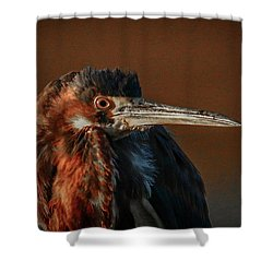 Eye To Eye With Heron Shower Curtain