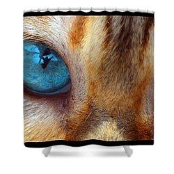Eyes 1b Shower Curtain