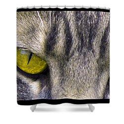 Eyes 1c Shower Curtain