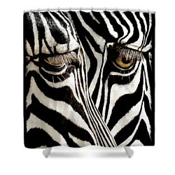Eyes And Stripes Forever Shower Curtain