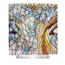 Eyes Of A Goddess - Stained Glass Shower Curtain