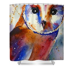Eyes Of The Guardian Shower Curtain