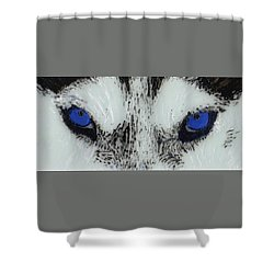 Eyes Of The Wild Shower Curtain