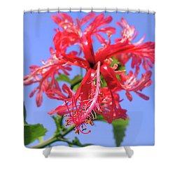 F18 Hawaiian Hibiscus Shower Curtain by Donald k Hall