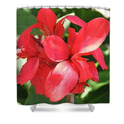 F22 Cannas Flower Shower Curtain by Donald k Hall