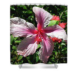 F5 Hibiscus Flower Hawaii Shower Curtain by Donald k Hall