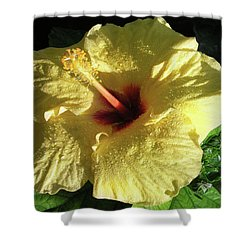 F9 Yellow Hibiscus Shower Curtain by Donald k Hall