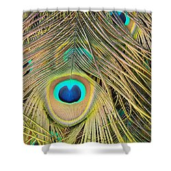 Shower Curtain featuring the photograph Fabulous Feathers by Margaret Bobb