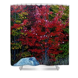 Fabulous Foliage Shower Curtain
