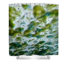 Fabulous In Foam Shower Curtain