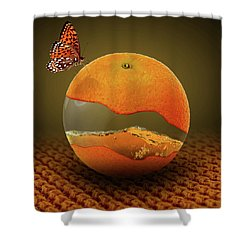 Facade Shower Curtain