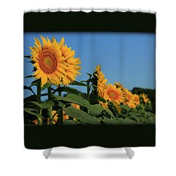 Shower Curtain featuring the photograph Facing East by Chris Berry