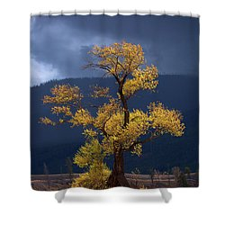 Facing The Storm Shower Curtain by Edgars Erglis