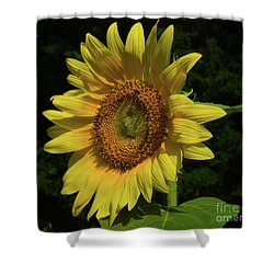 Hand Made By God Shower Curtain