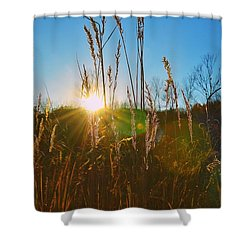 Shower Curtain featuring the photograph Faded Day by Nikki McInnes