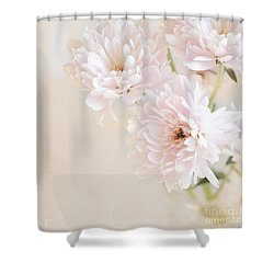 Faded Dream Shower Curtain by Lyn Randle