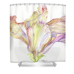 Faded Hibiscus Shower Curtain