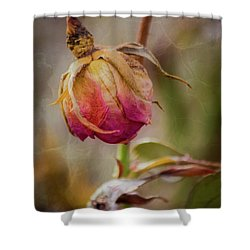 Fading Color Of Summer Shower Curtain