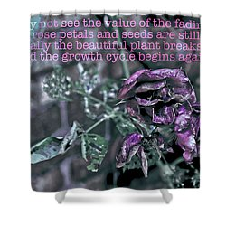 Shower Curtain featuring the photograph Fading Rose by Sandy Moulder