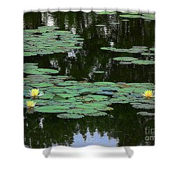 Shower Curtain featuring the painting Fairmount Park Lily Pond by Daun Soden-Greene