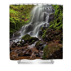 Fairy Falls In Columbia Gorge Shower Curtain by David Gn