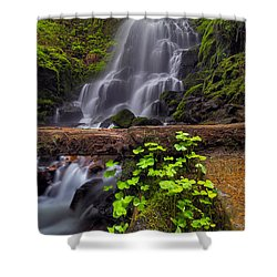 Fairy Falls In Spring Shower Curtain by David Gn