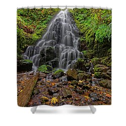 Shower Curtain featuring the photograph Fairy Falls by Jonathan Davison