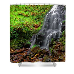 Shower Curtain featuring the photograph Fairy Falls Oregon by Jonathan Davison