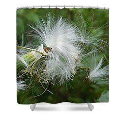 Fairy Flower Shower Curtain