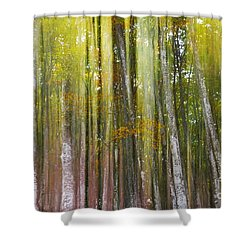 Shower Curtain featuring the photograph Fairy Forest I by Yuri Santin