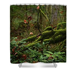 Fairy Forest Shower Curtain