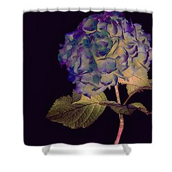 Fairy Hydrangea Shower Curtain