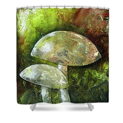 Fairy Kingdom Toadstool Shower Curtain