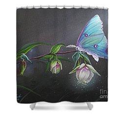 Fairy Lantern's Glow Shower Curtain by Joe Mandrick