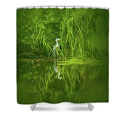 Fairy Tale Heron #g5 Shower Curtain